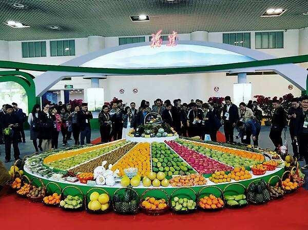 关于第十一届中国国际现代农业博览会(CIMAE 2020)的通告